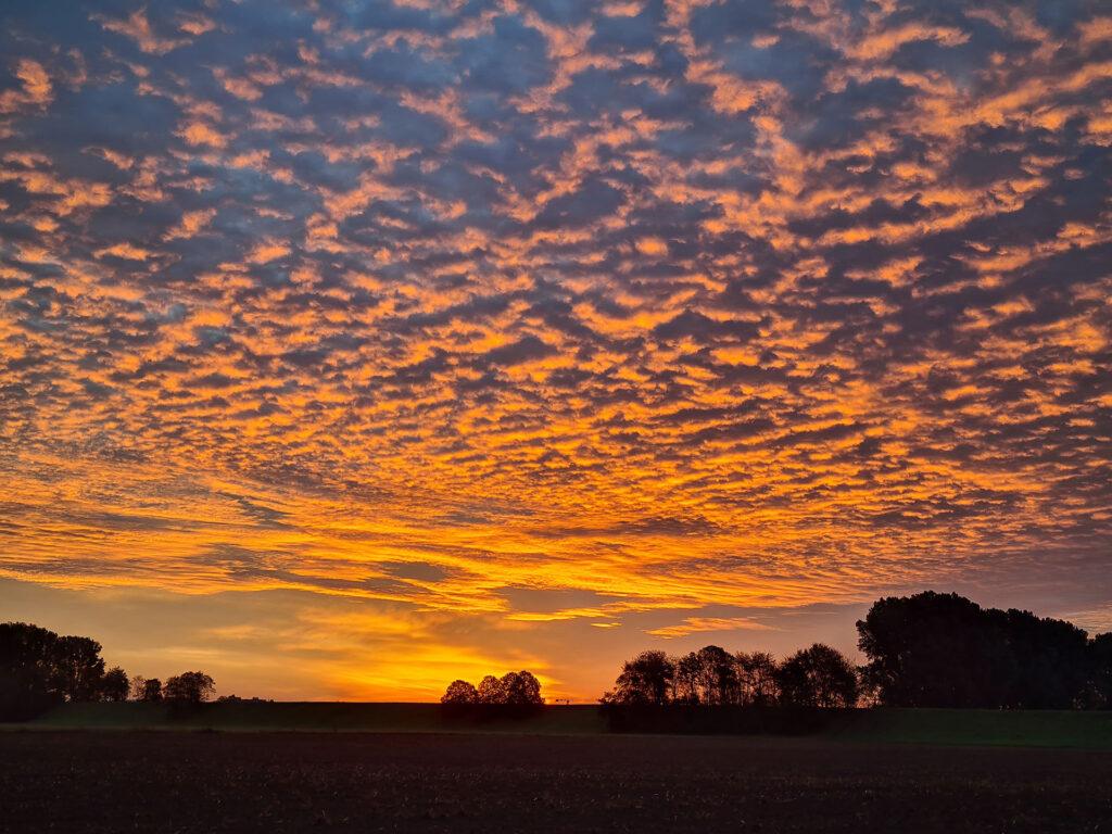 Sonnenaufgang an der Rheinfelder Festwiese Foto: © Cordula Bordihn