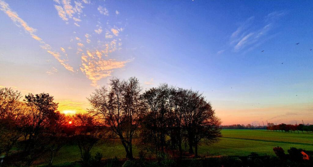 Rheinfelder Landschaft: © Lydia und Peter Schulze