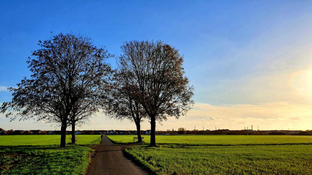 Der Weg: © Lydia und Peter Schulze